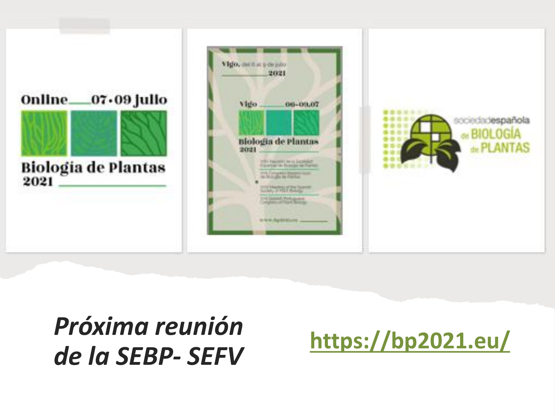 Diapositva2